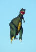 Dinosaur Hot Air ...