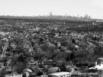 Skline of NY City