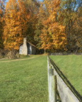 Rustic Cabin in Autumn