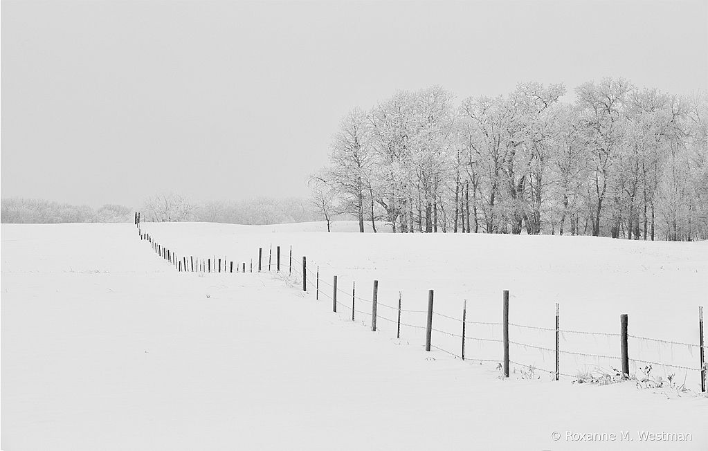 Fenceline through the snow - ID: 15809537 © Roxanne M. Westman