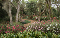 bok towers pathway