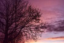 Beauty in the sky ....