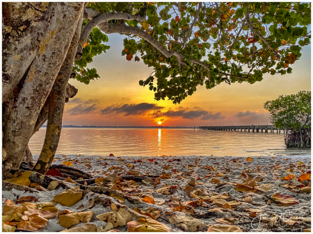 Indian River Sunrise 3-26-20