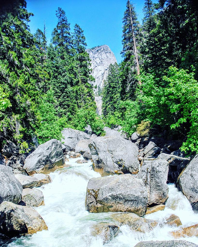 Rocky Mountain Stream in Yosemite Park