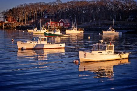 Harbor Glow