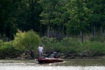 Fishing The Cove