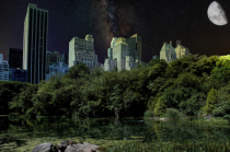Night in Central Park