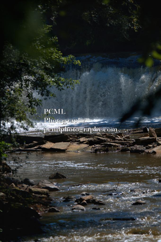 WPCM_2885 - ID: 15813814 © Pamela C.M Lammersen