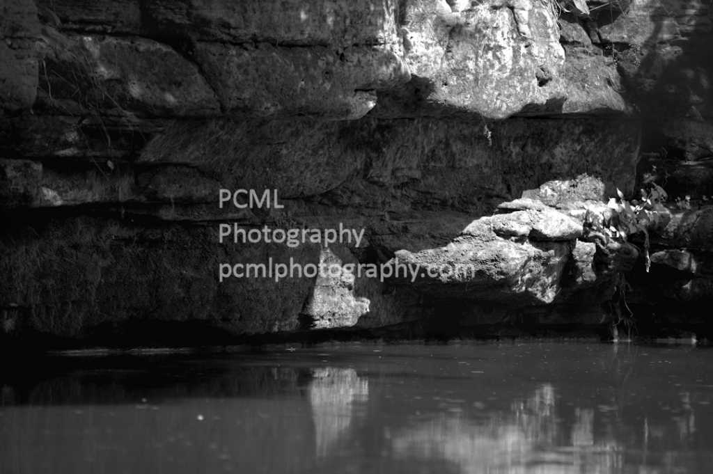 WPCM_28971 - ID: 15813815 © Pamela C.M Lammersen