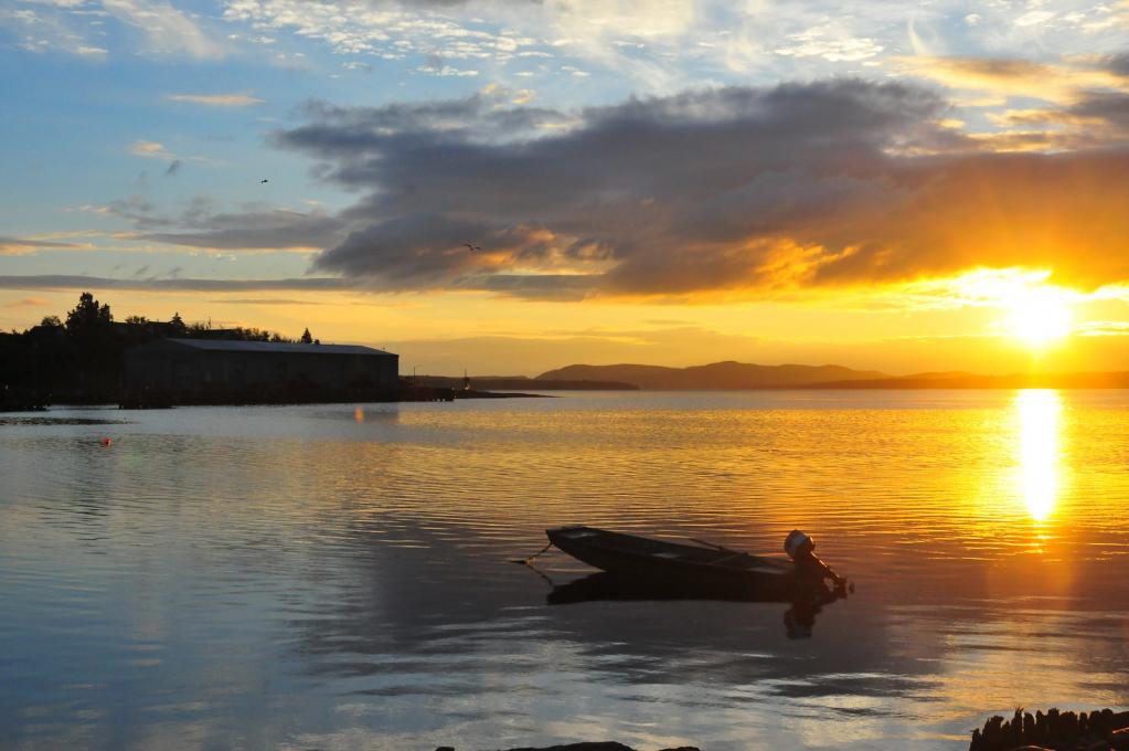 Newfoundland Sunrise!