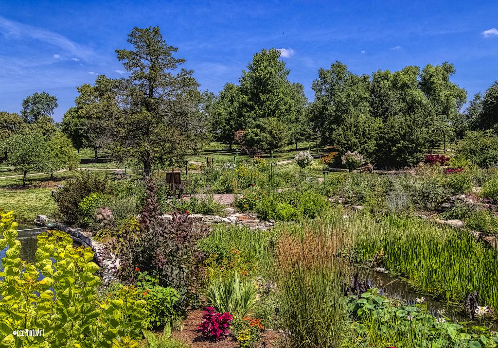 Upper Garden - ID: 15814341 © Candice C. Calhoun