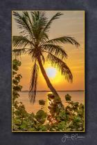 Indian Riverside Park Sunrise 4-15-20