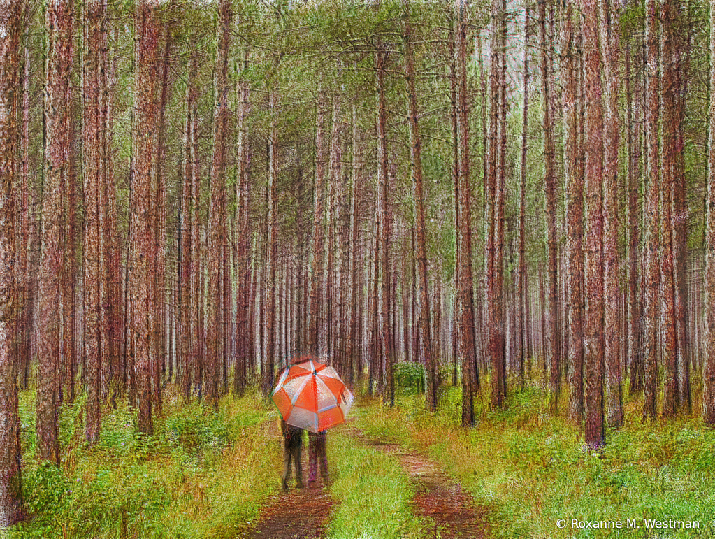 Walking in the rain - ID: 15814868 © Roxanne M. Westman