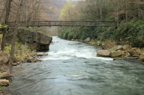 Early Spring at the Savage River