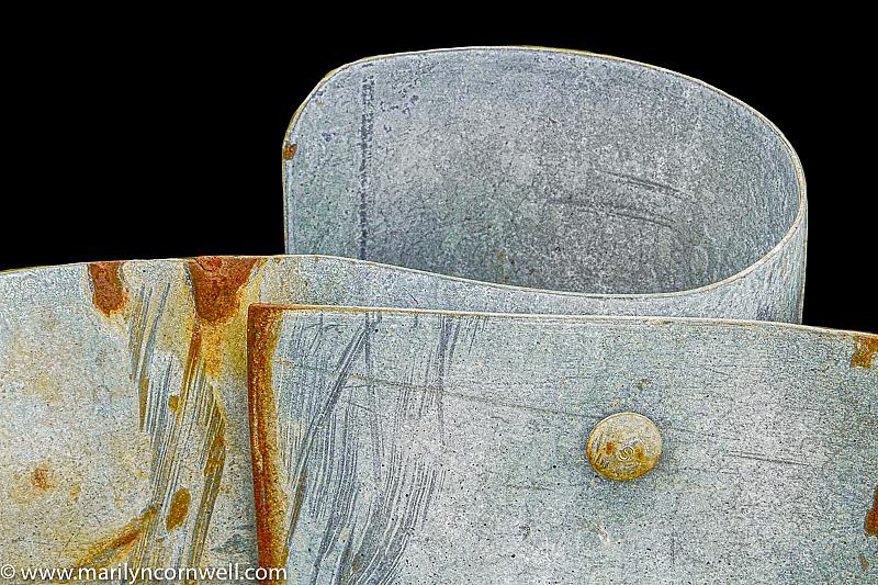 Tuxedo Style - ID: 15815446 © Marilyn Cornwell