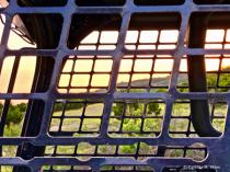 Bobcat Windows