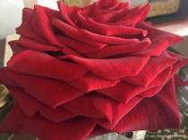 Petals stack