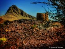 ~ ~ DESERT RUINS ~ ~