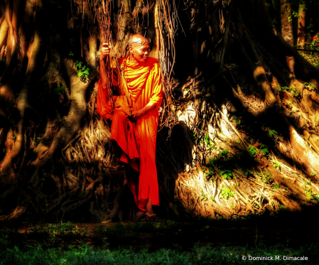 ~ ~ MONK BY THE BANYAN TREE ~ ~