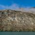 © Patricia A. Casey PhotoID # 15816826: Autumn in New Zealand