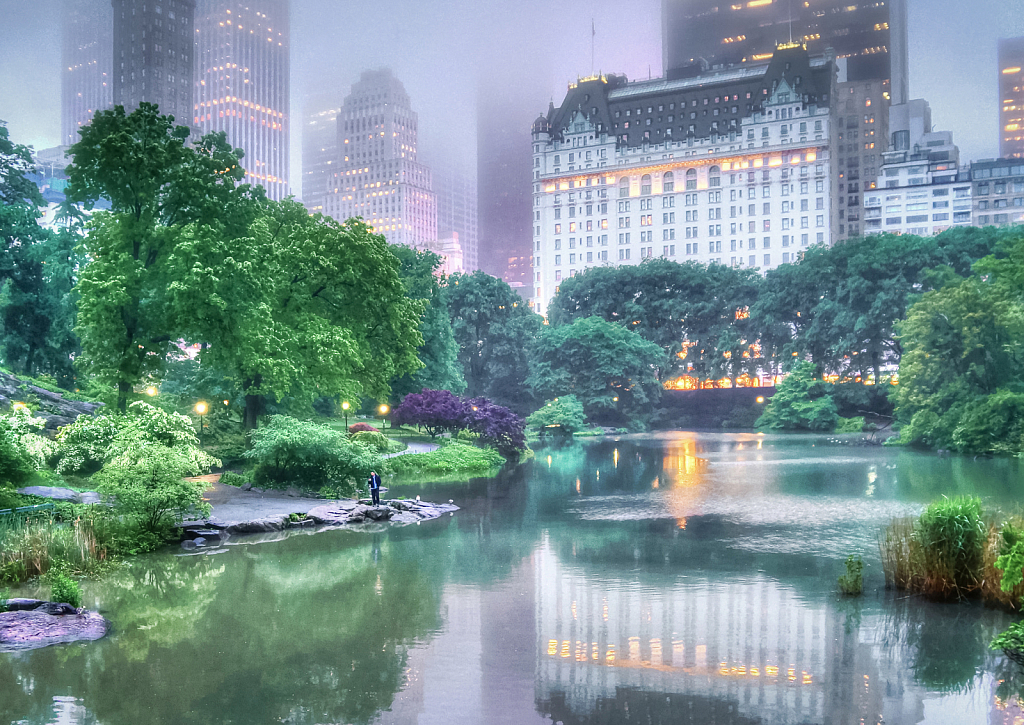 Overcast at the Pond, Central Park