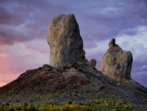 King and Queen of Trona