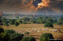 Evening of Bagan