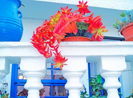 Colors of aegean island house.