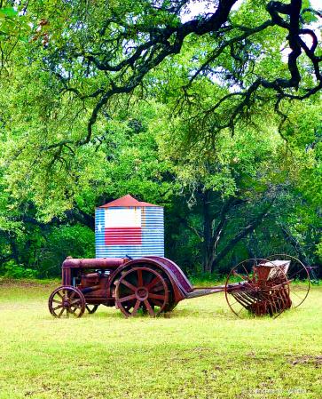On A Texas Farm