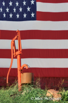 Flag and Pump