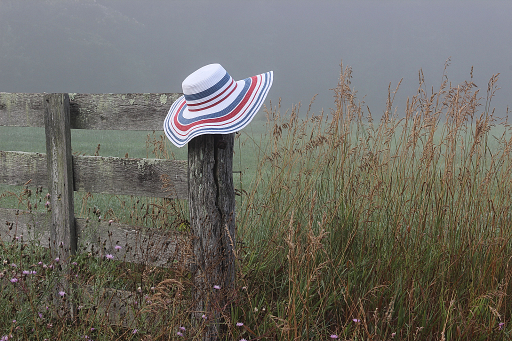 Hat on the Fence
