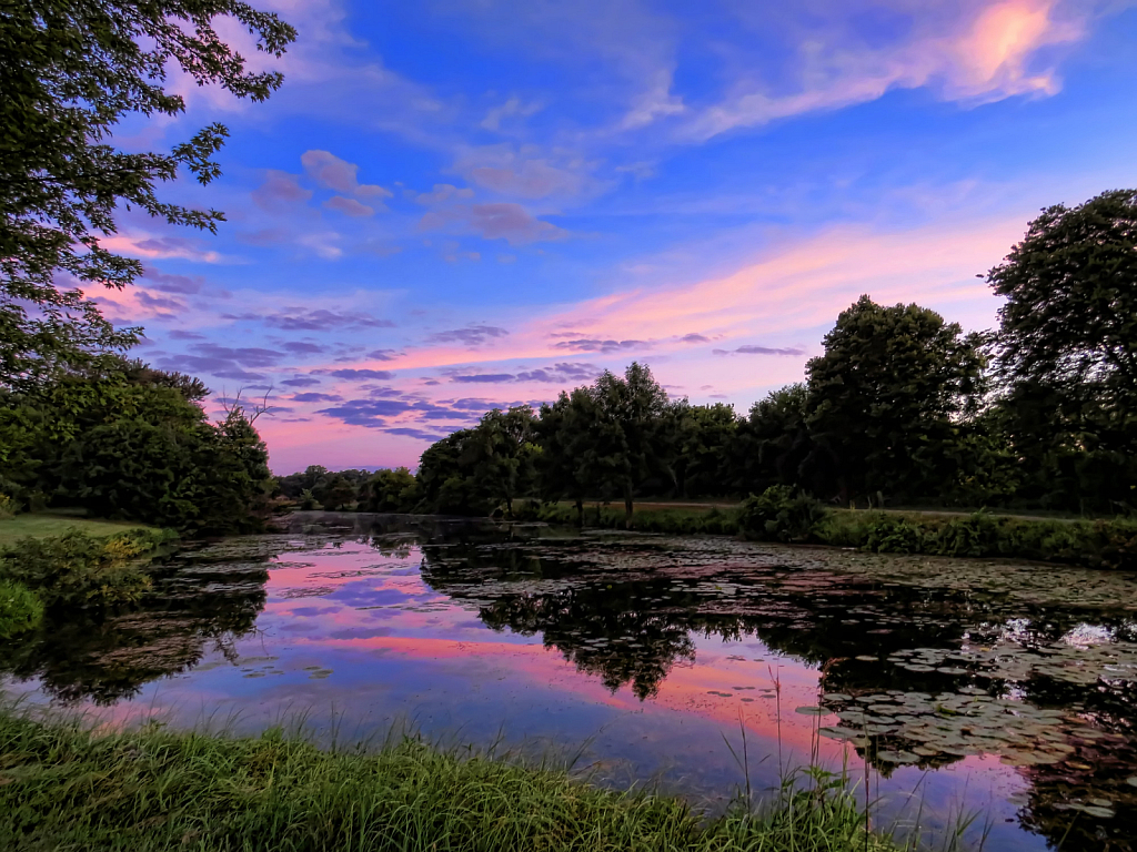 Sunrise Over The Greenbelt Pond
