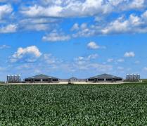 Rural Symmetry