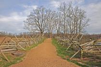 Gettysburg Road Symmetry I