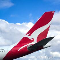 Red White and Blue, Kangaroo!