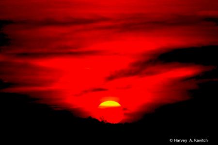 Painted Skies At Night...