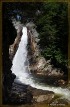 Glen Ellis Falls in NH