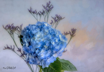 Sky Blue & Amethyst