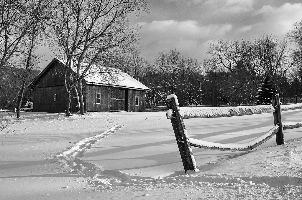 path to the barn