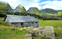 Old Mountain Stable