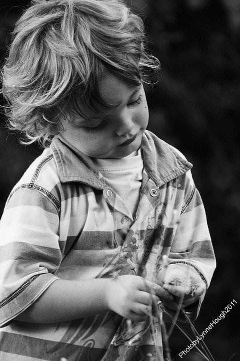 Lost in Childhood - ID: 15823648 © Lynne Hough