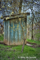 Outhouse in Spring