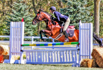 Action -  University of Findlay Jumping Demo