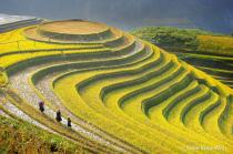 Wonderful Landscape of Vietnam