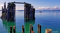 Salish Sea, Port Townsend, WA