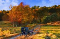 Autumn Buggy Ride