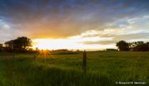 Sunset along the fenceline