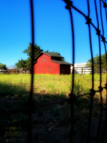 ~ ~ THE RED BARN BEHIND THE FENCE ~ ~