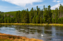On the Banks of the Yellowstone River