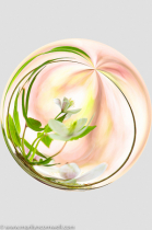 Flower in a Bubble